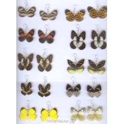 BO181DB Boucles ailes de papillons doubles